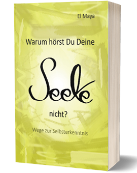 buch seele selbstfindung
